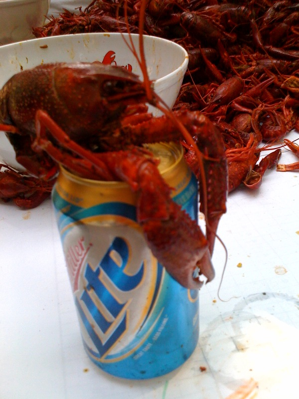 Crawfish and Seafood Shipped to Door/Airport